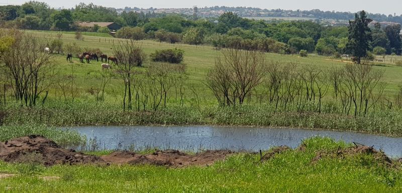Property For Sale in Sun Valley, Midrand 11
