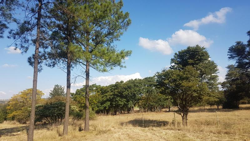 Property For Sale in Sun Valley, Midrand 7